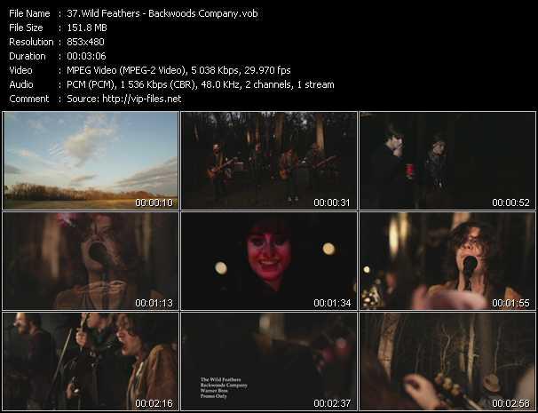Wild Feathers - Backwoods Company