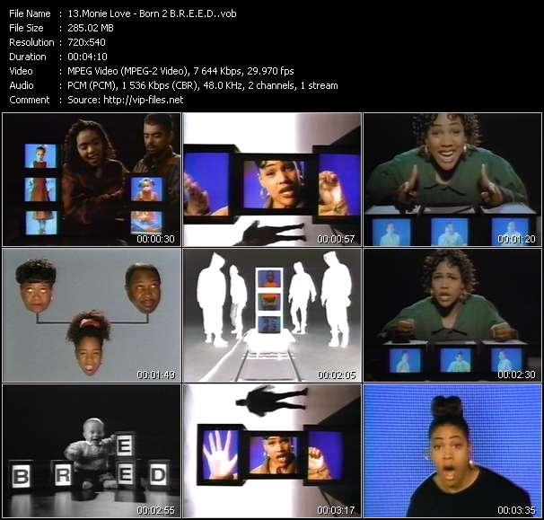 Monie Love - Born 2 B.R.E.E.D. (Build Relationships Where Education And Enlightenment Dominate)