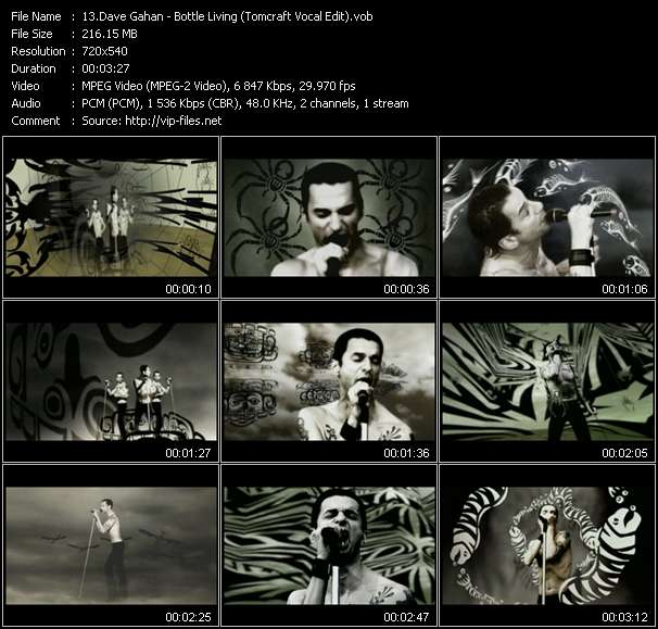 Dave Gahan - Bottle Living (Tomcraft Vocal Edit)