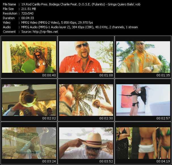 Rod Carrillo Pres. Bodega Charlie Feat. D.O.S.E. (Fulanito) - Gringa Quiero Baila'