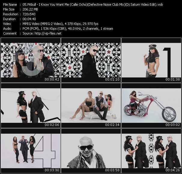 Pitbull - I Know You Want Me (Calle Ocho) (Defective Noise Club Mix) (Dj Saturn Video Edit)