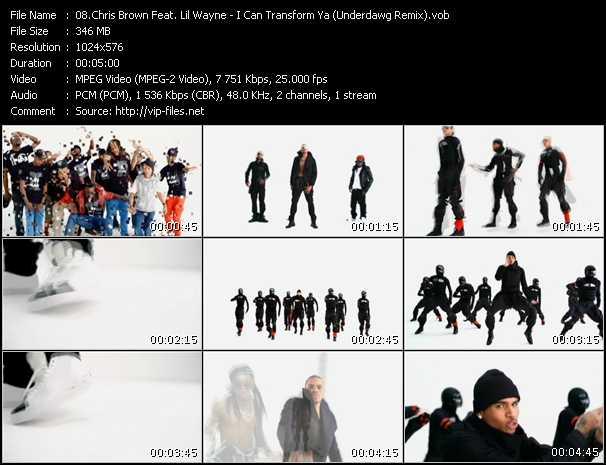 Chris Brown Feat. Lil' Wayne - I Can Transform Ya (Underdawg Remix)