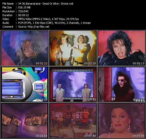 Bananarama - Dead Or Alive - Divine - Venus - Lover Come Back To Me - Walk Like A Man