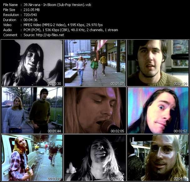 Nirvana - In Bloom (Sub-Pop Version)