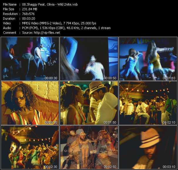 Shaggy Feat. Olivia - Wild 2nite