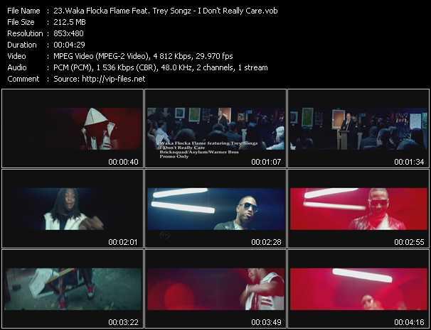 Waka Flocka Flame Feat. Trey Songz - I Don't Really Care